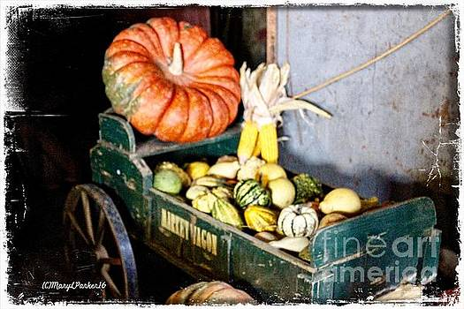 Thanksgiving  Harvest      by MaryLee Parker