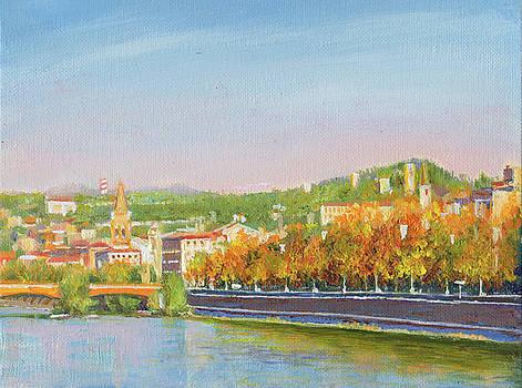 The Adige River at Verona by Dai Wynn