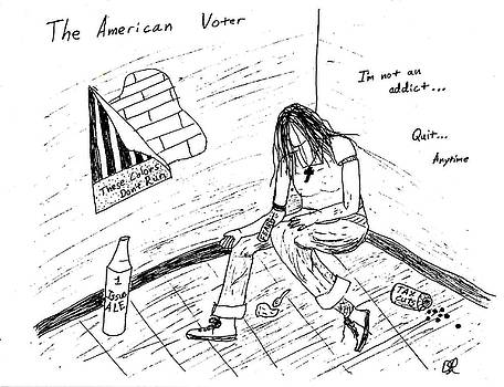 The American Voter by David S Reynolds