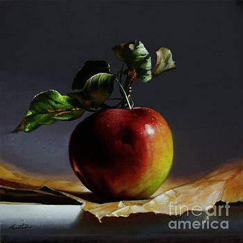 The Apple by Larry Preston