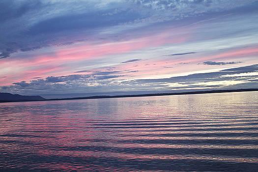The Bay by Elvira Butler