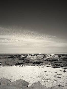 Joyce Dickens - The Beautiful Monterey Bay Coastline B And W