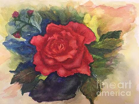 The Beauty of a Rose by Lucia Grilletto