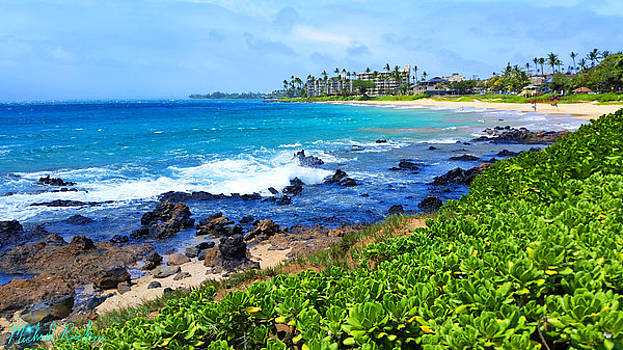 The Beauty of Maui by Michael Rucker