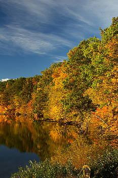 The Beginnings of Fall by Amanda Kiplinger
