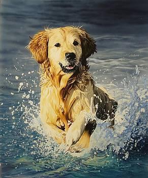 The big splash by Julian Wheat