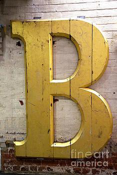 The Biggest B by Brenda Kean