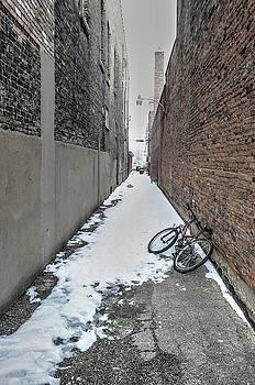 The Bike by Jeffrey Platt