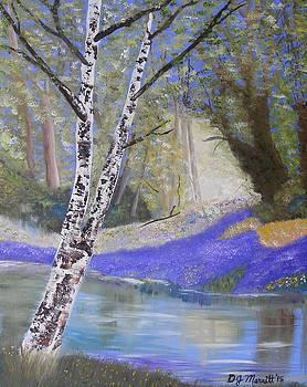 The Birch by Dorothy Merritt