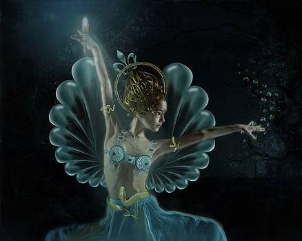The Blue Fairy by Terry Fleckney