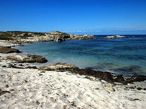 Joyce Dickens - The Blue Waters Of Monterey Bay