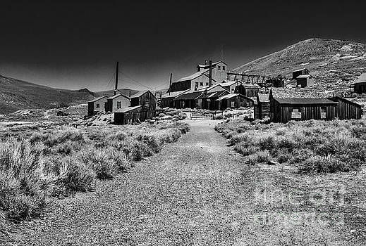 The Bodie Stamp Mill by Mitch Shindelbower