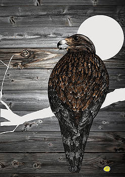 The buzzard by Robert Breton