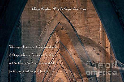 the Caged Bird Sings - Maya Angelou inspiring quote by Ella Kaye Dickey