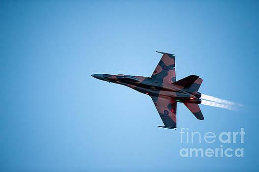 The CF18 by Wayne Wilton