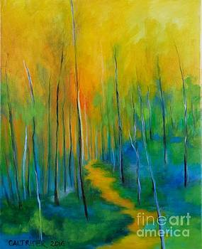 The Chosen Path  by Alison Caltrider