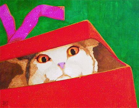 The Christmas Cat by John Pinkerton