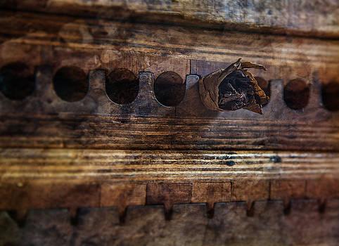 The Cigar Press by Nichon Thorstrom