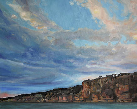 The Cliffs by Emily Olson