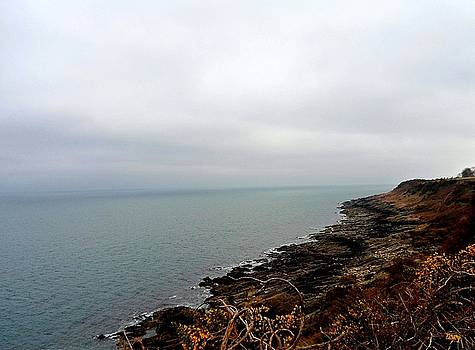 The Coast Of County Down by Patrick J Murphy