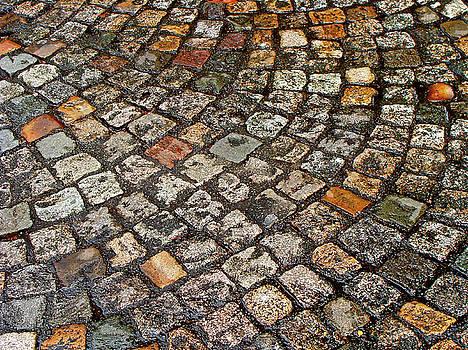 The Cobblestones Of Paris by Ira Shander