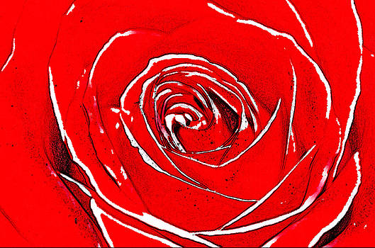 The color of Love by Tears of Colors Gallery