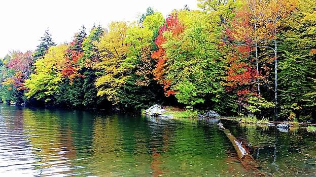 The Colors Of Lake Raponda - Wilmington, Vermont by Joseph Hendrix