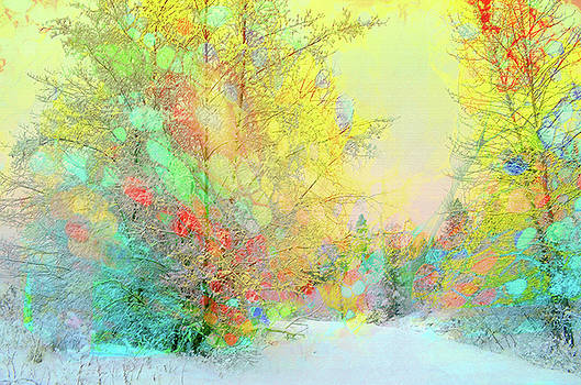The Colours Winter Hides Inside by Tara Turner