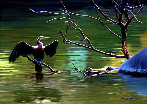 The Cormorant  by Thanh Thuy Nguyen