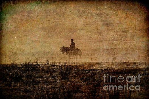The Cowboy by Lynn Sprowl