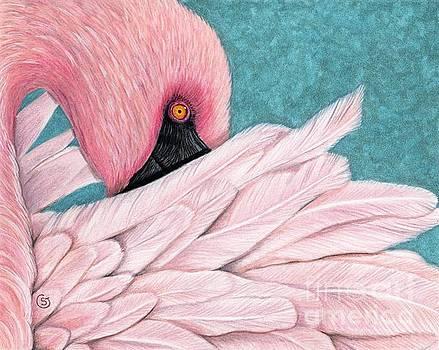 The Coy Flamingo by Sherry Goeben