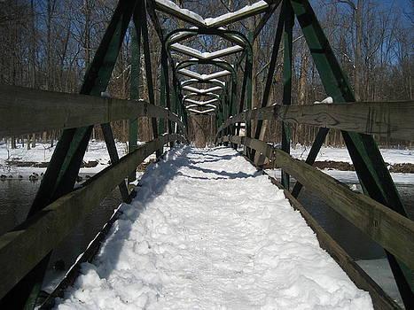 The Crossing by Sheryl Burns
