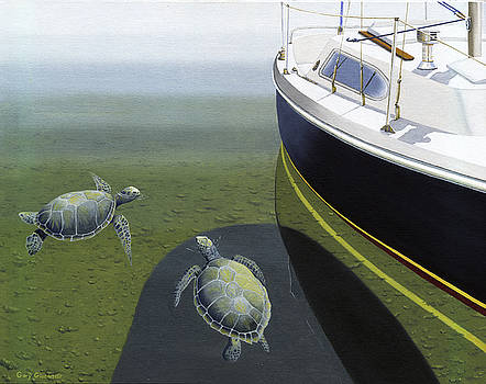 The Curiosity Of Sea Turtles by Gary Giacomelli
