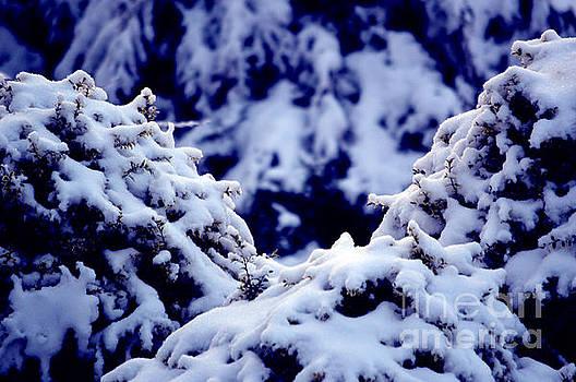Susanne Van Hulst - The Deep Blue - Winter Wonderland in Switzerland