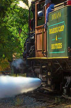 The Dixiana Letting Off Steam by Garry Gay