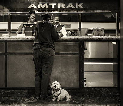 The doggy wants a seat by the window.. by Michel Verhoef