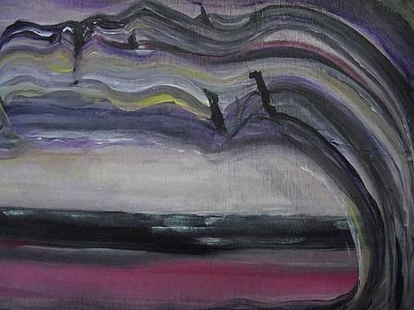 The Dreamer by Paula  Heffel