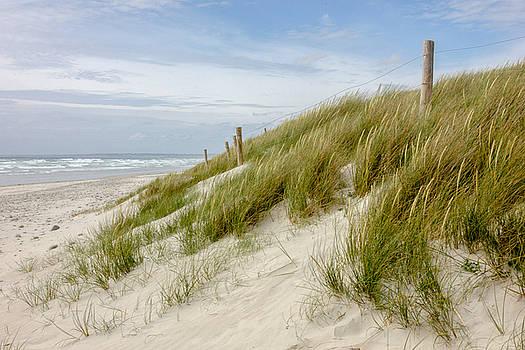 The Dunes by Sophie De Roumanie