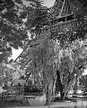 Chris Smith - The Eiffel Tower from the gardens in Black and White