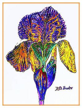 The Emotive Iris by Kimberlee Baxter