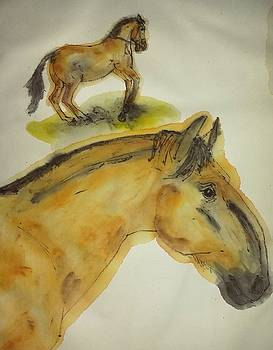 the Equines are Coming album by Debbi Saccomanno Chan