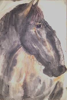 The Equines are coming  by Debbi Saccomanno Chan