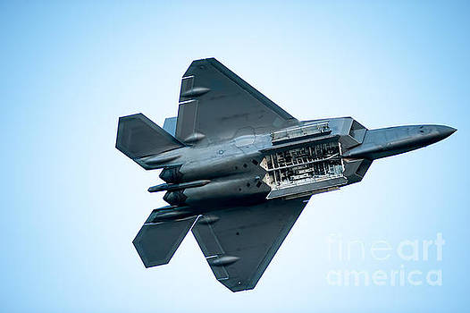 The F22 Raptor by Wayne Wilton