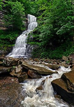 The Falls by Lj Lambert