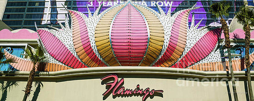 The Flamingo Center Sign by Eric Evans