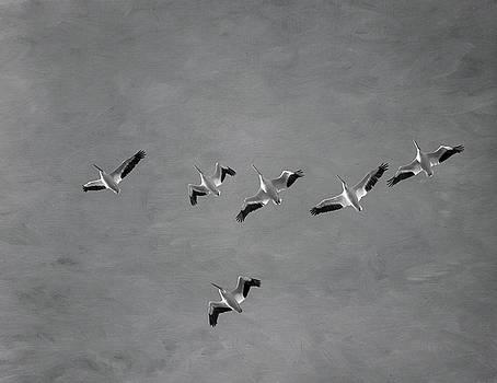Kim Hojnacki - The Flock