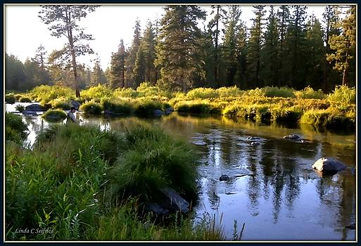 The Fly Fisherman by Linda Seifried