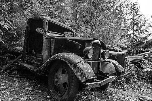The Forgotten by Larry Goss