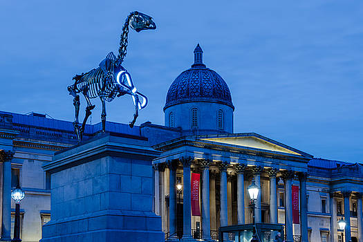 The Fourth Plinth by James Evans