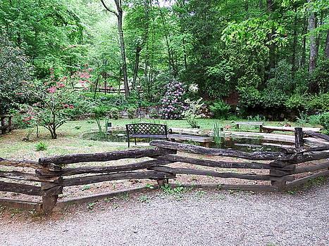 The Garden by Cathy Harper